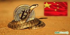 Çin'in Bitcoin'e Müdahalesi 'Kobra Etkisi' Yaratabilir