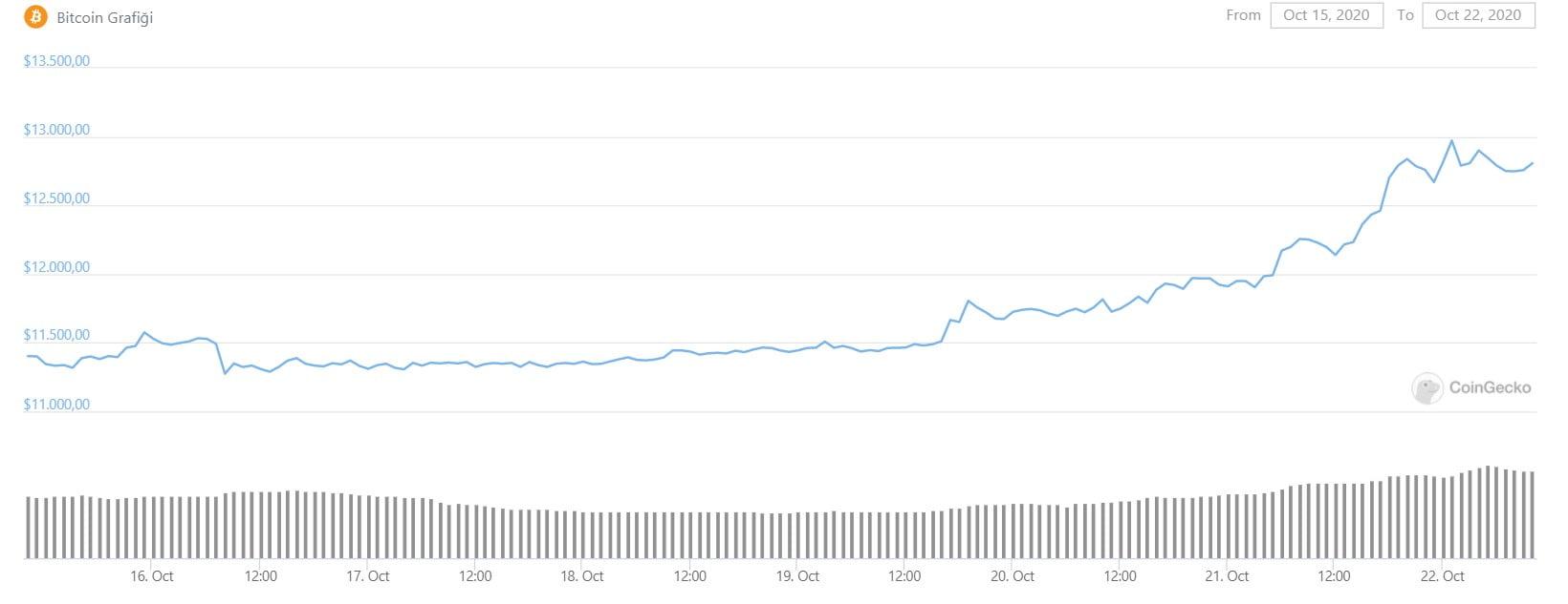 Bitcoin-13-bin-dolar-yukselis