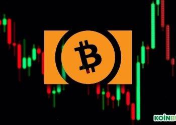 Bitcoin Cash Analiz