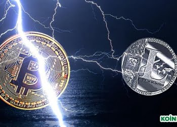 Bitcoin Litecoin Lightning Network