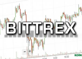 Bittrex Borsa