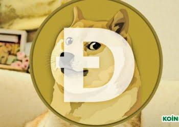 Doge 5. yıl