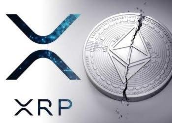 ripple-xrp-anketi