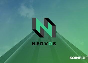 Nervos-network-ckb