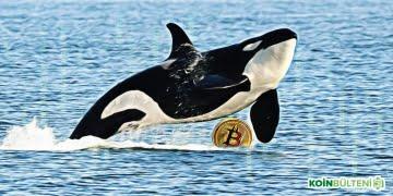 bitcoin-balina-endeksi