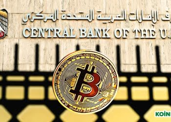 birleşik arap emirlikleri merkez bankası kripto paralar hakkında açıklama