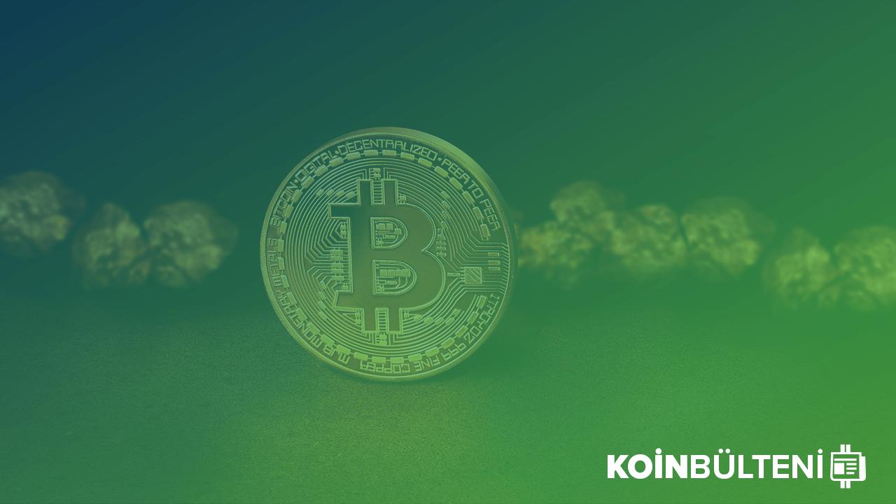 bitcoin-btc-fiyatı