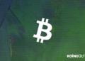 bitcoin-altcoin-kripto-para-fiyat-dolar-neden-dusuyor