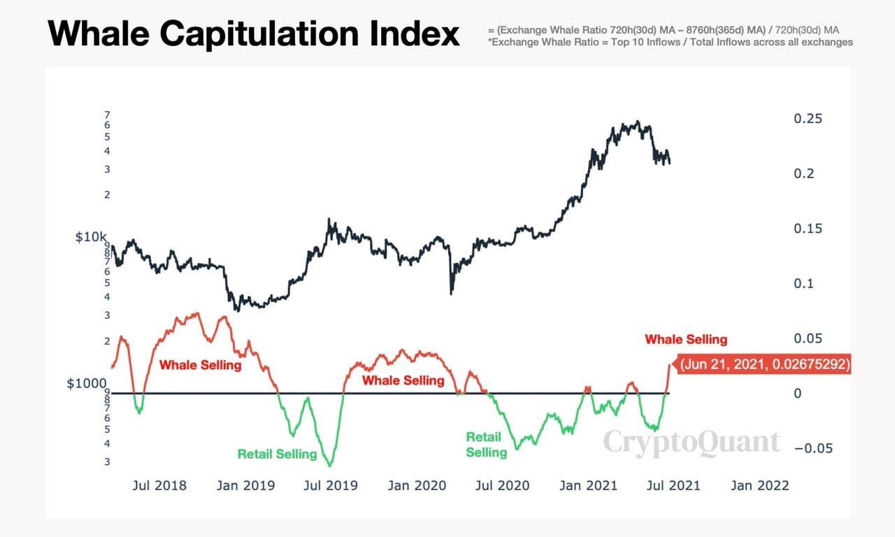 bitcoin-ayi-piyasasi-whale-capitulation