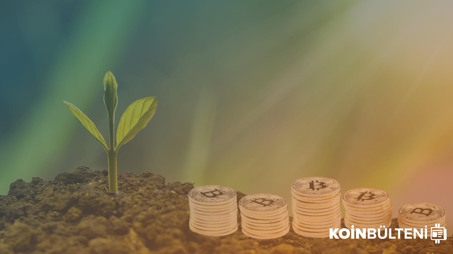 kripto-para-girişim