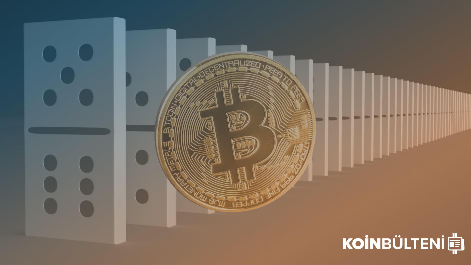 bitcoin-dominansı