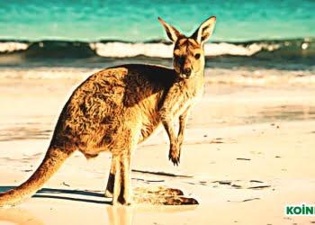 Kanguru Avustralya