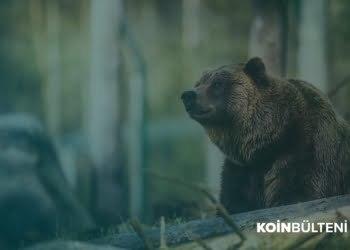 binance-bitcoin-altcoin-bearish