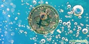 kripto-para-piyasasi-balonlar-hakkinda-bilgiler