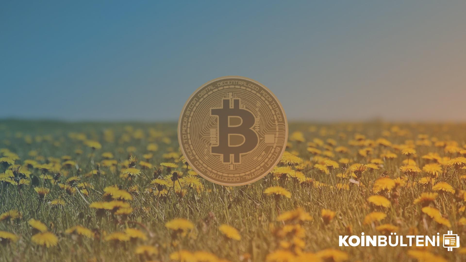 bitcoin-mayıs