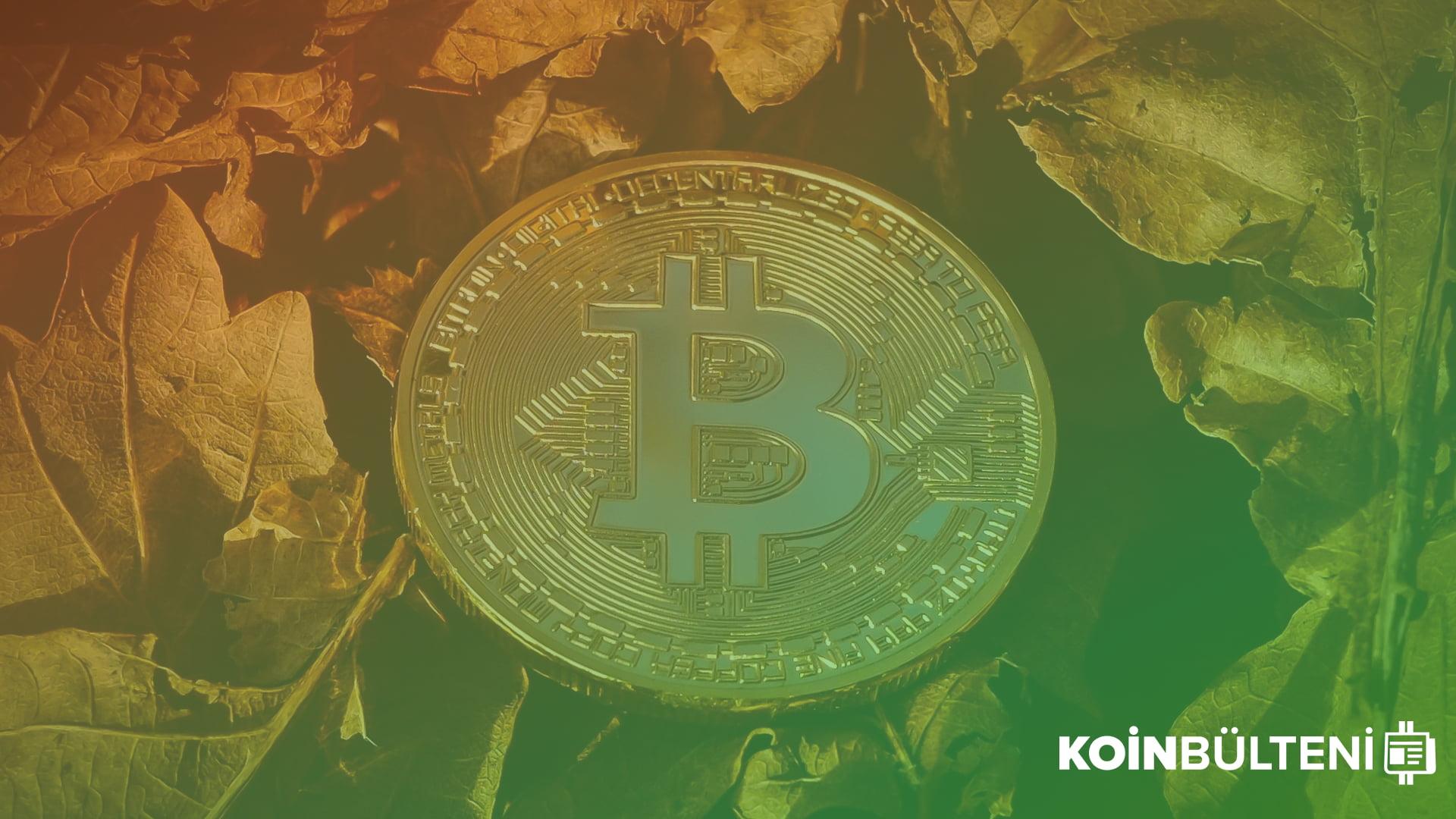 bitcoin-milyarder